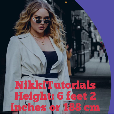 Nikkietutorials Height >> Nikkitutorials Height, Weight, Age, Wiki, Net Worth